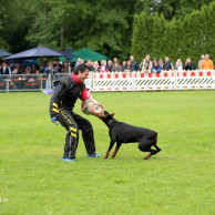 20130707_2031568612_dechiara_vom_sassenburger_land_6